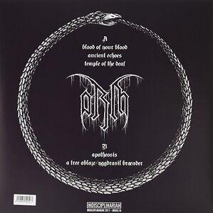 ORM - ORM (VINYL)   VINYL LP NEW