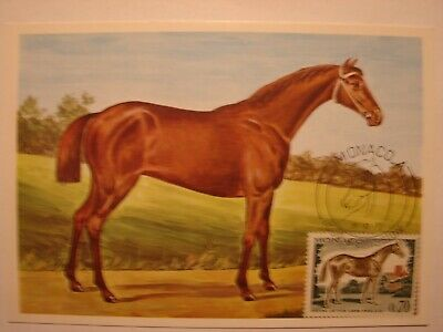 Estilo De Moda (bu243) Animal Horse (paard) 1970 Monaco Maximum Maxi Card Postcard