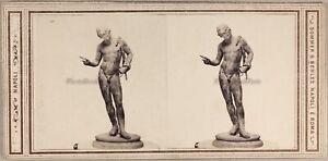 Italia Foto Scultura Narcissus c1865 Museo Da Napoli Stereo Vintage Albumina