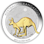 Australian Gilt Gilded 2019 Kangaroo Proof Silver 1 oz Dollar $1 Coin Australia