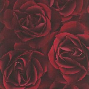 Image is loading FLORAL-ROSE-WALLPAPER-DEEP-RED-RASCH-525625-FLOWERS