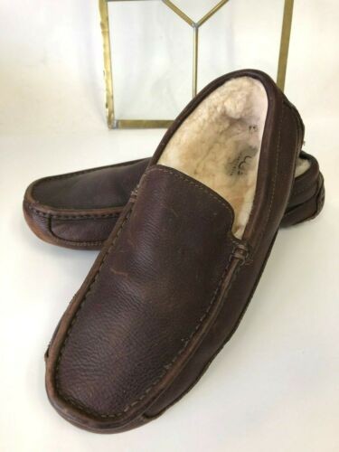 UGG Australia Ascot Driving Shoes Moccasin Brown L