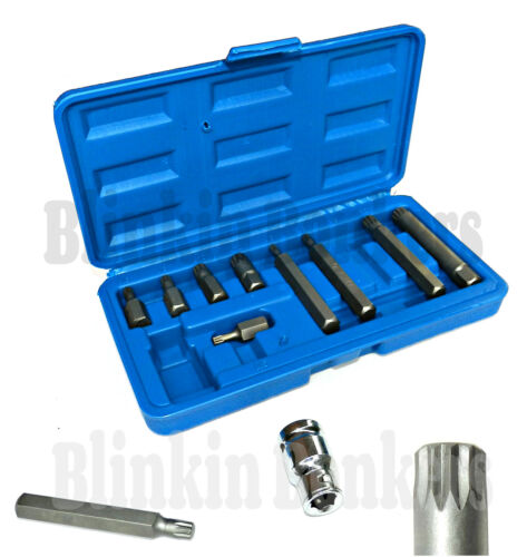 "11PC SPLINE BIT SET LONG AND SHORT 1//2/"" DRIVE SOCKET TOOL M5 M6 M8 M10 M12 25C"