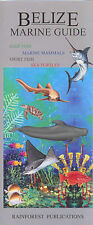 Belize Marine Guide: Reef Fish, Marine Mammals, Sport Fish, Sea Turtles (Costa R