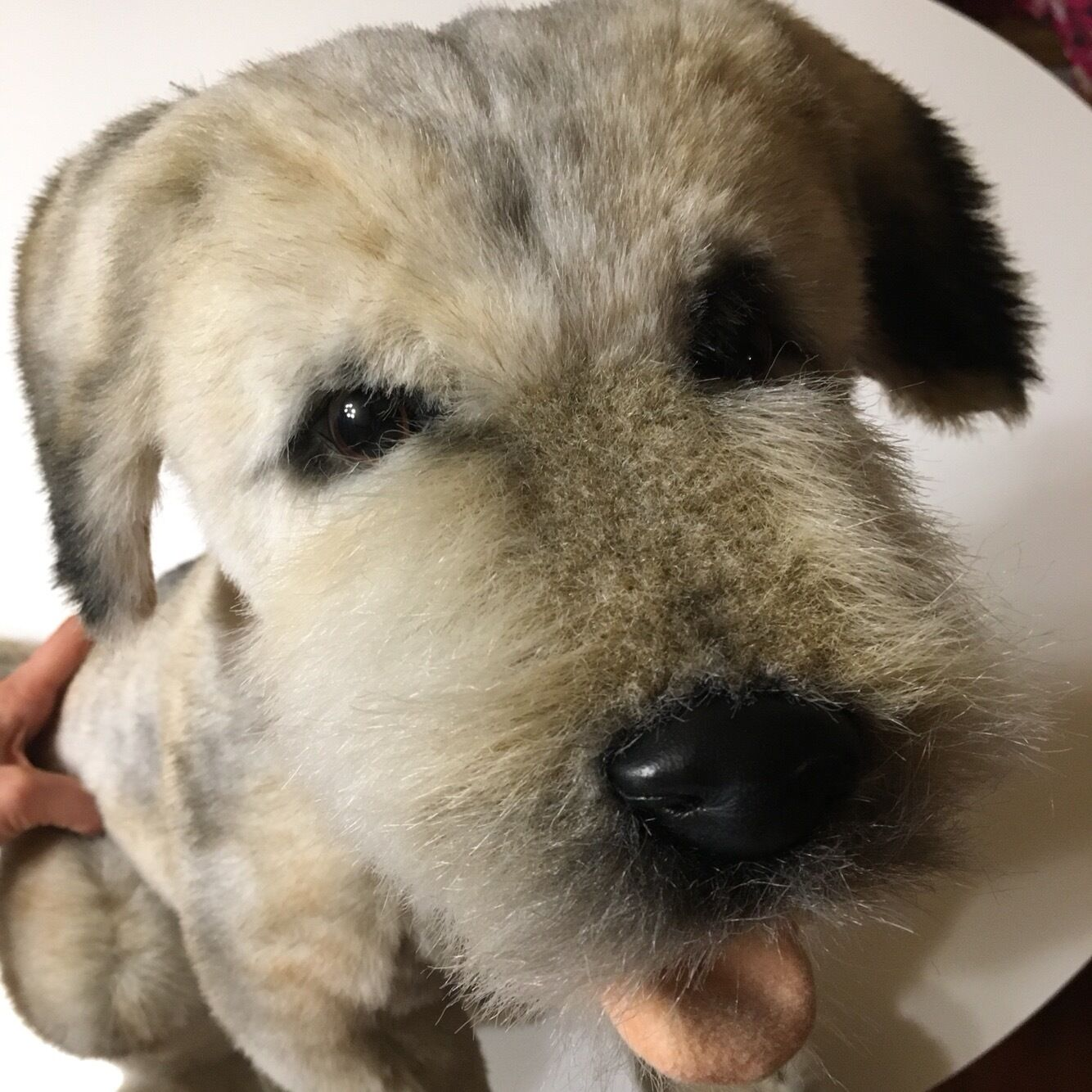 Miss oh Border Terrier Stuffed Plush Soft Toy Dog 7045cm Stofftier realistic