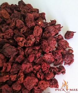 Carolina-Reaper-Chilli-Pods-Worlds-Hottest-Chilli-100-Reaper-10g