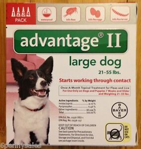 Advantage Ii For Small Dog Reviews