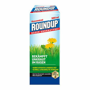 roundup lawn weed free concentrate 500ml dandelion plantain killer ebay
