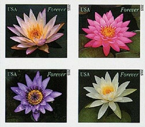 2015 49c Water Lilies, Block of 4, Imperforate Scott 49