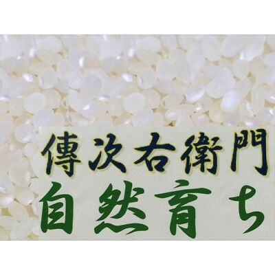 "DENJIUEMON ""KOSHIHIKARI"" Japanese Polished White Short Rice PEP1-10 kg F/S Japan"