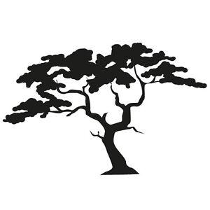 Akazienbaum wandtattoo wandsticker wandaufkleber baum natur wald bl tter akazie ebay - Wandtattoo natur ...