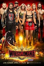 WWE Raw Poster Strowman Bellas Rollins Reigns Ambrose Finn Balor 11x17 13x19