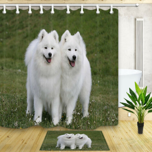 White samoyed dog Shower Curtain Bathroom Decor Fabric /& 12hooks 71x71inches