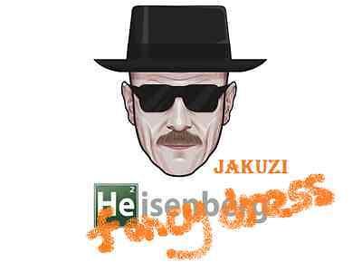 Heisenberg Kit Breaking Bad Fancy Dress Hat Glasses Walter Mens Costume White