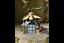 Fairy-Treehouse-Teapot-Sunflower-House-Wishing-Well-Metal-Garden-Decor-Ornament thumbnail 30
