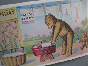 Vintage-Busy-Bear-Postcards-Days-of-the-Week-Printed-in-HONG-KONG-Lot-of-7