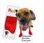 thumbnail 18 - Pawz Rubber Dog Shoes Wound Relief Re-usable And Sold In Singles,2,4,8 or 12s