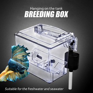 Fish-Tank-Breeding-Hatchery-Incubator-Aquarium-Breeder-Isolation-Hang-Box-CA