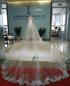 Crystal Applique Bridal Wedding Veils Cathedral Length With Comb 5M White Ivory