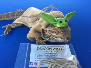 Dragon-Wings-and-Things-Costumes-Adult-Bearded-Dragon