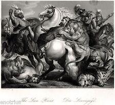 The Lion Hunt.Caccia al Leone.Di Rubens. Acciaio.Steel Engraving.STAHLSTICH.1850
