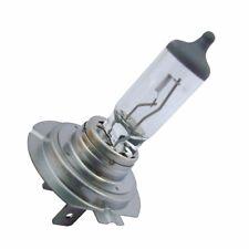 Bid Osram 12v 80w Off-Road H7 Halogen Bulb 62261 Lamp Super Bright Headlight