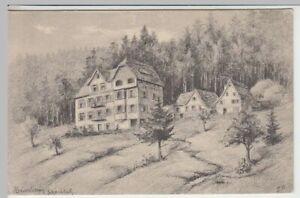 41880-Kuenstler-AK-S-B-Baiersbronn-Hotel-Schoenblick-1912
