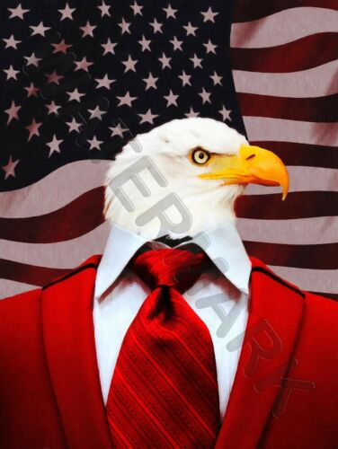 EAGLE IN A SUIT AMERICAN FLAG PRINT ONLY ART POSTER HP3714