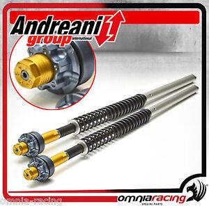 Kit-Cartuccia-Forcella-Misano-Andreani-105-H15-Honda-CBR-650-F-2014