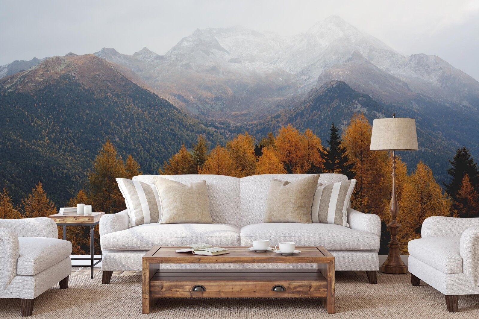 3D Wälder Berge 7061 Tapete Wandgemälde Tapete Tapeten Bild Familie DE Sidney