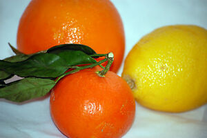 Citric-Acid-Food-Grade-Anhydrous-Best-quality-you-can-buy-100-gm-to-10-Kilos