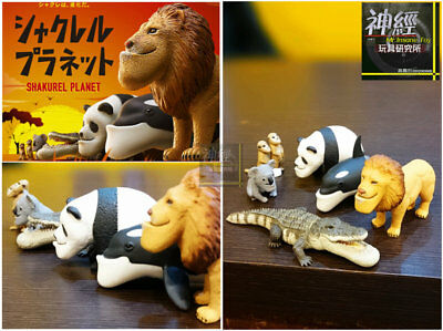 Takara Tomy Panda/'s ana Shakurel Planet Part1 Wild Animal Meerkat Figure