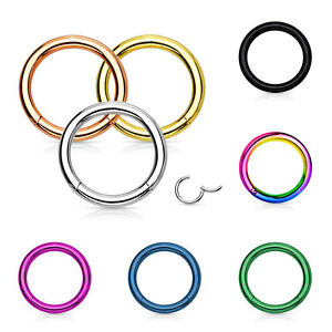 Segment-Ring-Piercing-Septum-Scharnier-Klicker-Universal-Nasen-Lippen-Ohr-Intim
