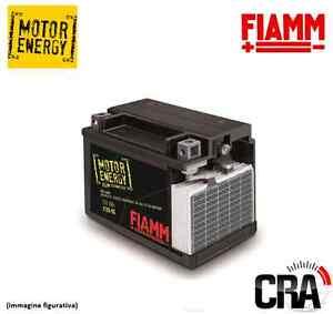 Mode 2019 Batteria Moto Fiamm Ytx20ch-bs 18ah 270a 7904493 à Distribuer Partout Dans Le Monde