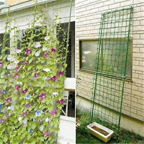 Gardens Nylon Trellis Netting Support Climbings Bean Plant Nets Grow Fenc AFO