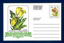 "SOUTH AFRICA - VENDA - Cart. Post. - 1979 - ""Dick Findlay '79"":Zantedeschia jucu"