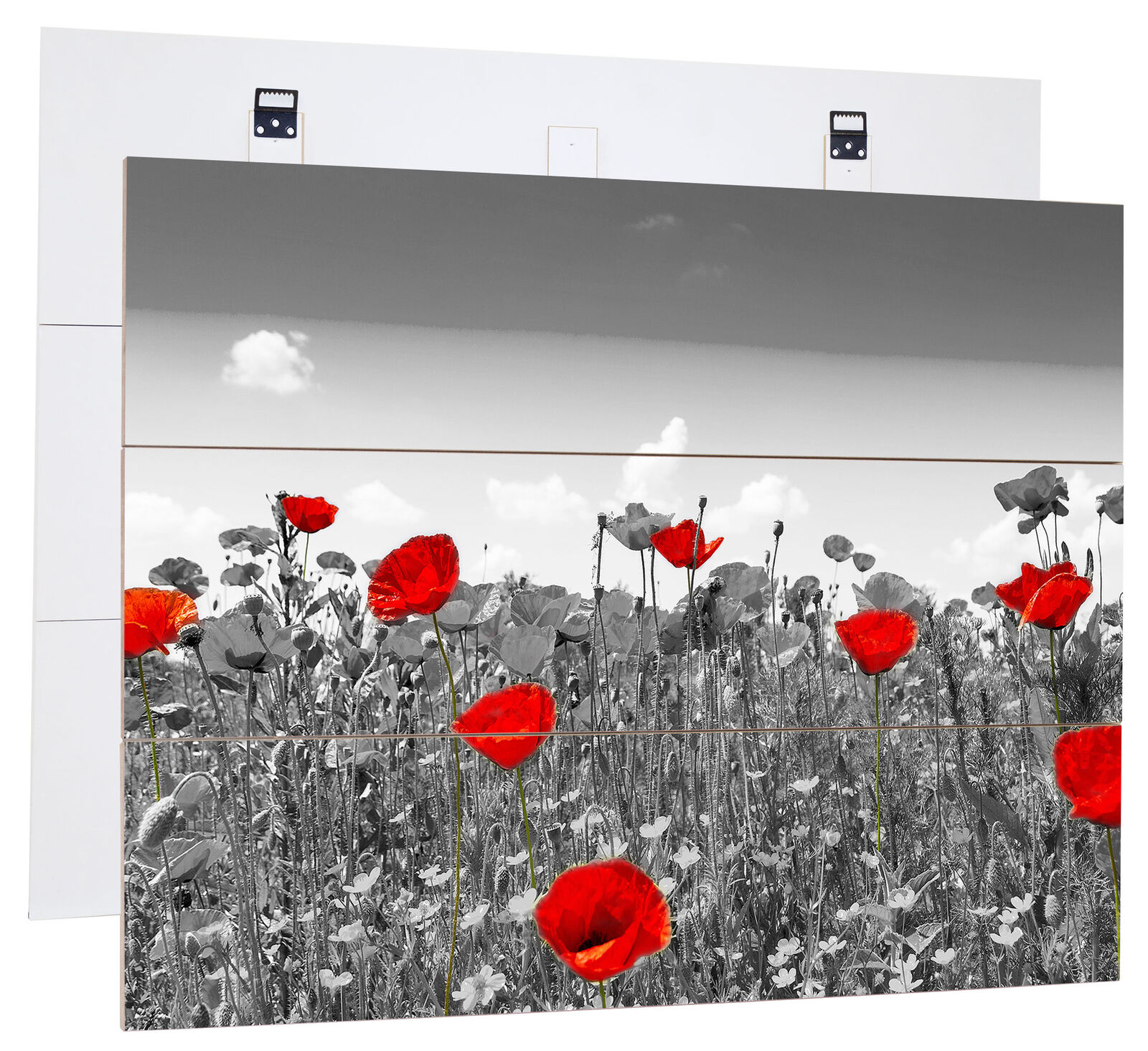 Superbe Rouge Shining Coquelicot B&w - Authentique Mdf-Holzbild Bretterlook,