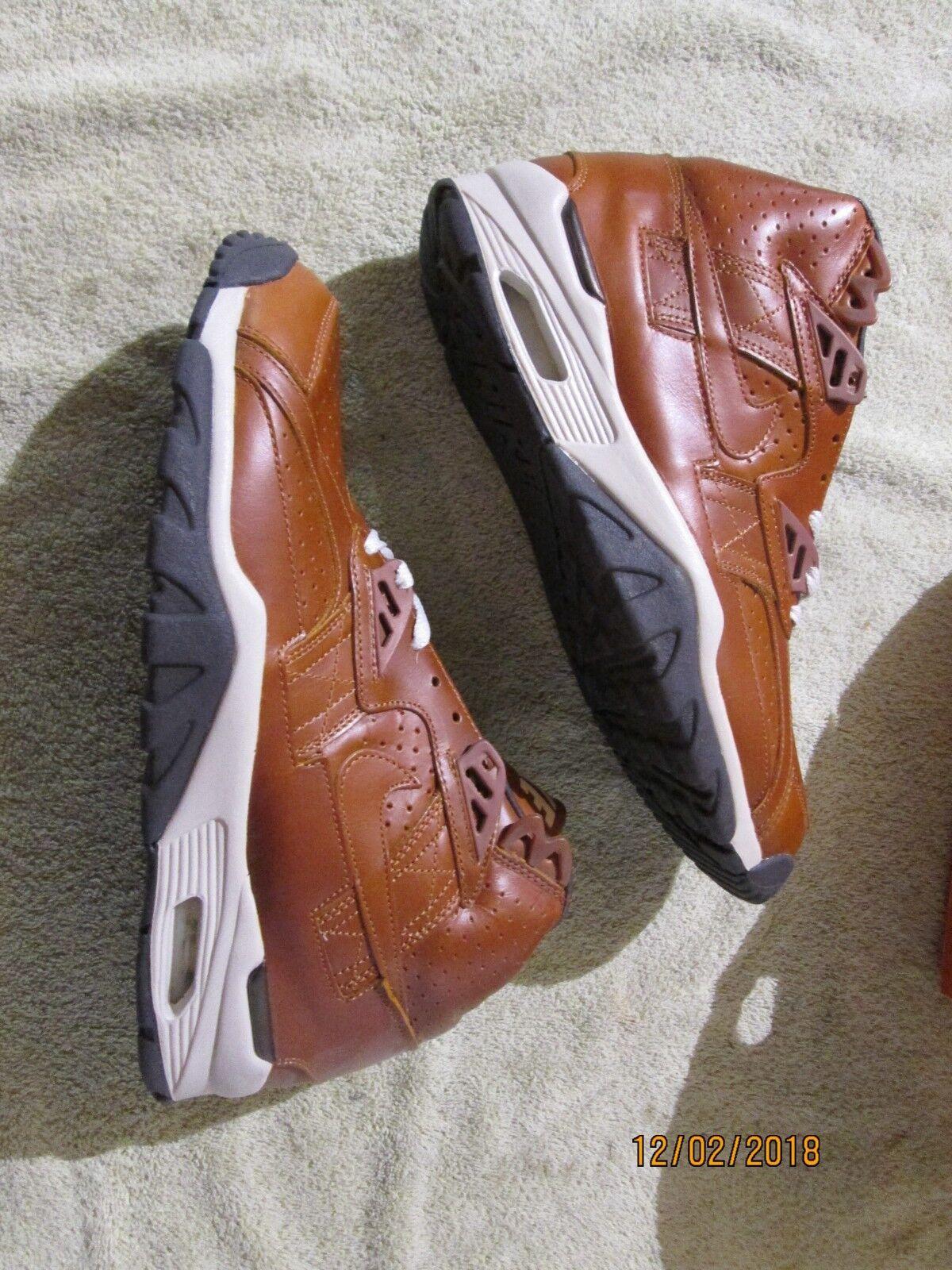 Men's Nike Air Trainer SC premium 2003 OG Curry pack 306969-771 Size 10.5