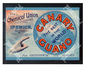 Historic-The-Chemical-Union-Limited-Ipswich-c-1900-Advertising-Postcard
