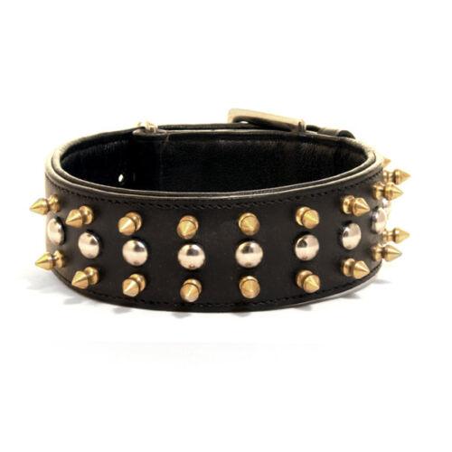 Leather Stud Collar for dogs Stylish SALE Spike Collar Studded Dog Collar