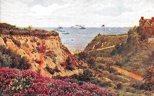 R269502 Alum Chine. Bournemouth. A. R. Quinton. Saumon. 1944
