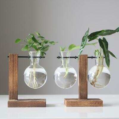 Vintage Glass Plant Bonsai Flower Vase Wood Tray Flower Rack Desktop Decor Home Nautical Glass Vases Home Garden