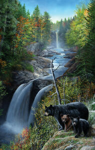 Bears at the Waterfall 550 Piece Jigsaw Puzzle by SunsOut