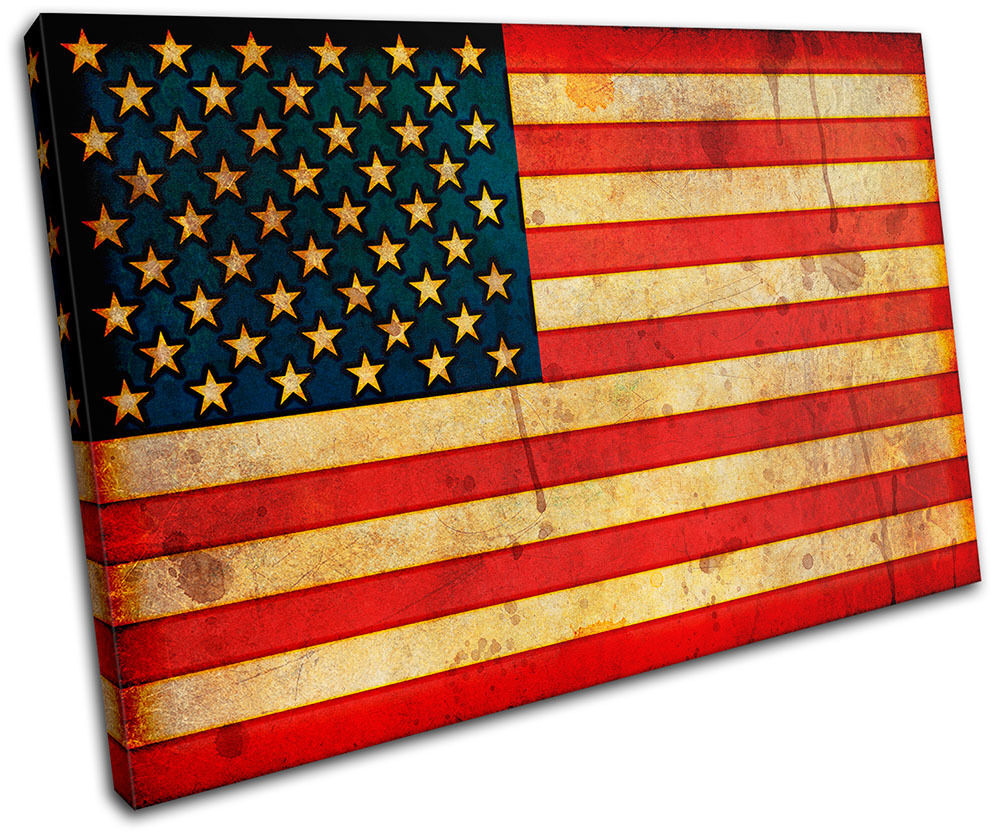 Abstract American Maps Flags SINGLE TOILE murale ART Photo Print