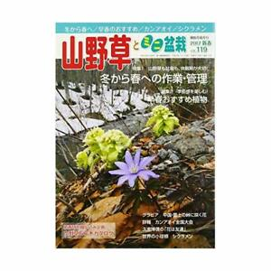 bonsai-Book-Yamano-grass-and-mini-bonsai-2017-01-May-issue-magazine