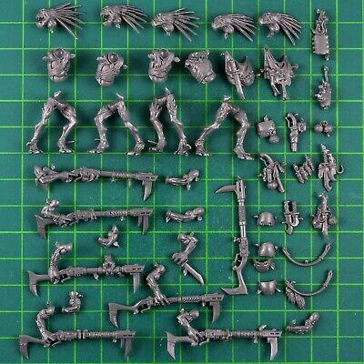 Tau Empire Kroot Carnvore Jagdtrupp Torso A Warhammer 40K Bitz 8423