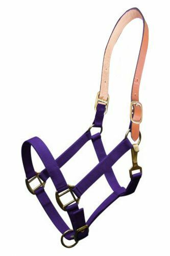 Heavy Nylon Breakaway Safety Horse sz Turn out Halter Green Blue Red Purple Teal