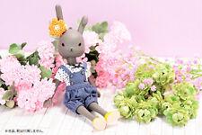 Petworks Usagii bunny rabbit figure Usaggie Nude 004 GRAY