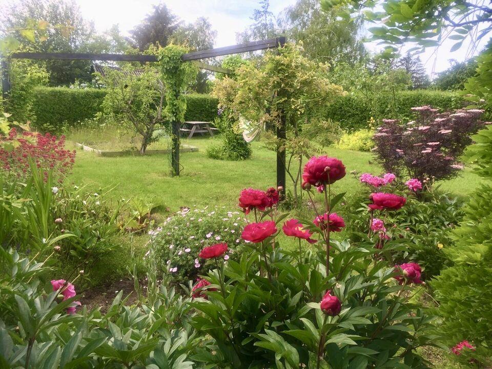 Skøn have (ca. 400 kvm.), bedste beliggenhed