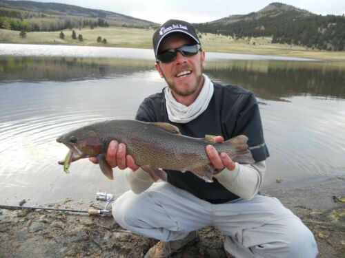 Trout Fishing Lure Dynamic Lures HD Trout Trout Natural